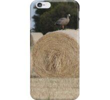 Hay Goosey, Goosey. iPhone Case/Skin