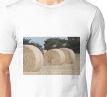 Hay Goosey, Goosey. Unisex T-Shirt