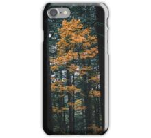 Lonely Yellow Tree iPhone Case/Skin