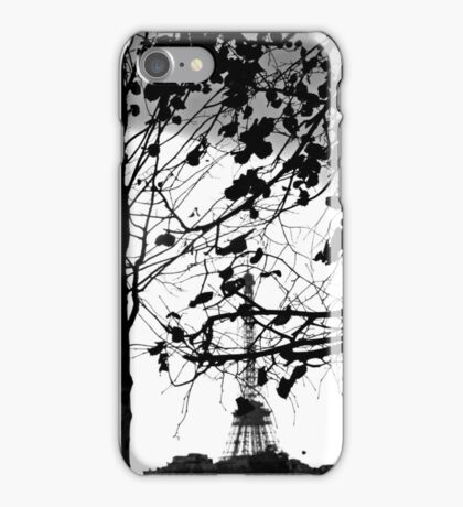 muslin light through clotted lace iPhone Case/Skin
