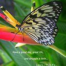 Butterflies for 2012 by ienemien