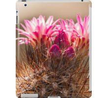 succulent plant in the garden iPad Case/Skin