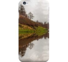 Penllergare Upper Lake iPhone Case/Skin