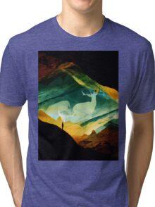 Native Dream Catchers Tri-blend T-Shirt