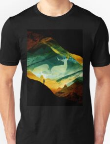 Native Dream Catchers T-Shirt