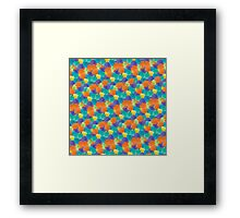 Coloured Shells Framed Print
