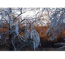 January riverside Photographic Print