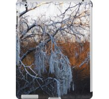 January riverside iPad Case/Skin