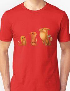 Pokemon Charmander Evolution  T-Shirt