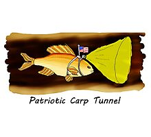 Patriotic Carp Tunnel Photographic Print