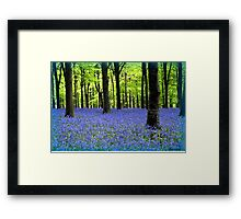 Haze Of Blue - Bluebell Wood Dorset Framed Print