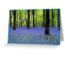 Haze Of Blue Greeting Card