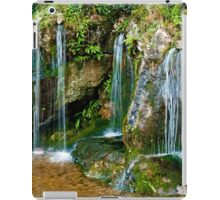 Blarney Waterfall iPad Case/Skin
