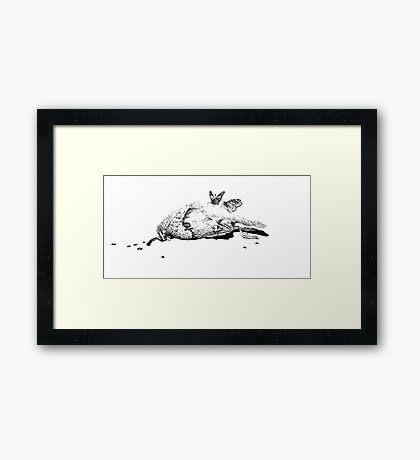 Natural History - Bird Framed Print