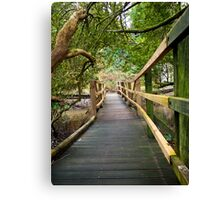 Blarney Boardwalk Canvas Print