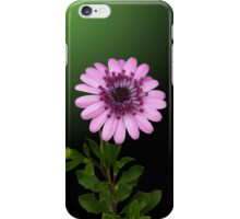Study in Pink and Green iPhone Case/Skin