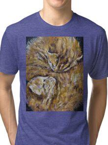 Sleeping Kittens Tri-blend T-Shirt