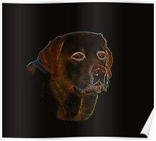 Dark Surreal Labrador Retriever Design Poster