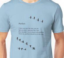 Bo Burnham's Perfect Poem Unisex T-Shirt