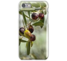 Ripe Olives Branch iPhone Case/Skin