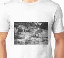 View at Yellowstone  Unisex T-Shirt