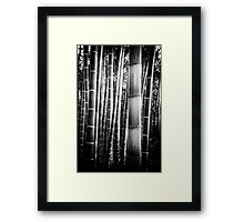 Bamboo Grove in Kyoto Framed Print