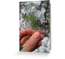 Ice peeled off of a leaf - 2016 Greeting Card