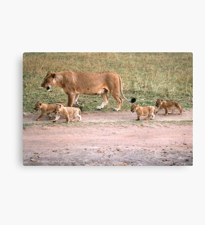 Taking The Kids To School Canvas Print