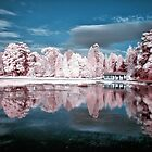 Curling Pond Blues by Cat Perkinton