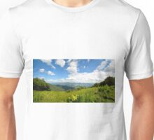 Blue Ridge Parkway 1 Unisex T-Shirt