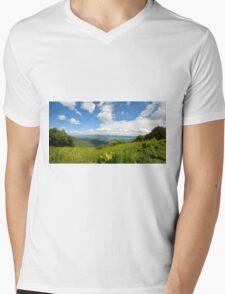 Blue Ridge Parkway 1 Mens V-Neck T-Shirt