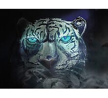 Cool tiger printed products Photographic Print