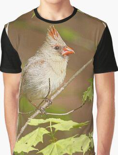 Northern Cardinal Graphic T-Shirt