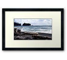 Spring at Rialto Beach, Washington State Framed Print