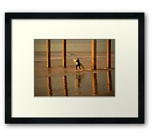 California Surfing at La Jolla Framed Print
