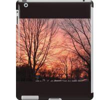 Michigan Sunset iPad Case/Skin