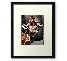 """""""Whatcha Doing?"""" Curious Giraffe Framed Print"""
