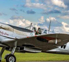 "Spitfire LF.IXc MK732/3W-17 PH-OUQ ""Polly Grey"" taxying Sticker"