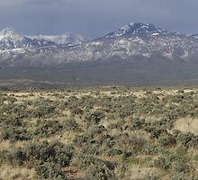 LaSal Mountains by Alan Mitchell