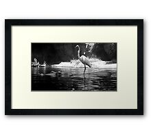 Hitchin' a Ride Framed Print