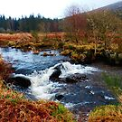 A wee burn, Scotland by sarnia2