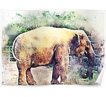 Elephant art Poster