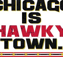 Chicago is Hawkytown by cbreezy