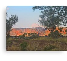 Late afternoon at Purnululu Canvas Print