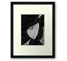 ©NS The Sentinel In The Sun VIIA Monochrome. Framed Print