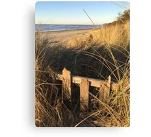 Autumn Dunes Canvas Print