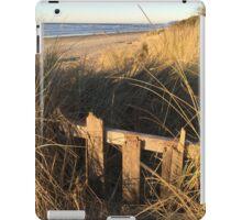 Autumn Dunes iPad Case/Skin