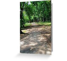 Looking into a shaded forest. Greeting Card