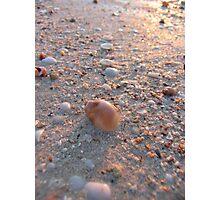Macro Beach Reflections Photographic Print