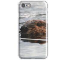 Maine Beaver iPhone Case/Skin